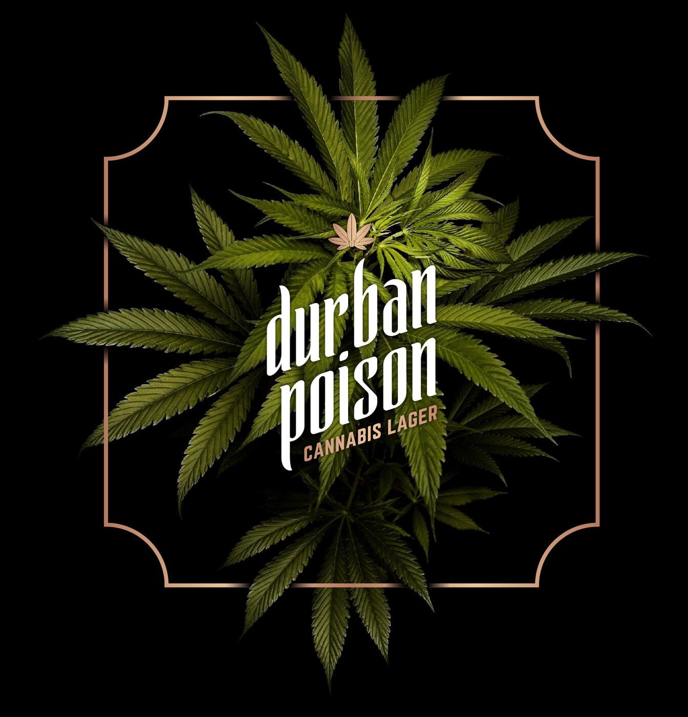durban poison cannabis lager 2